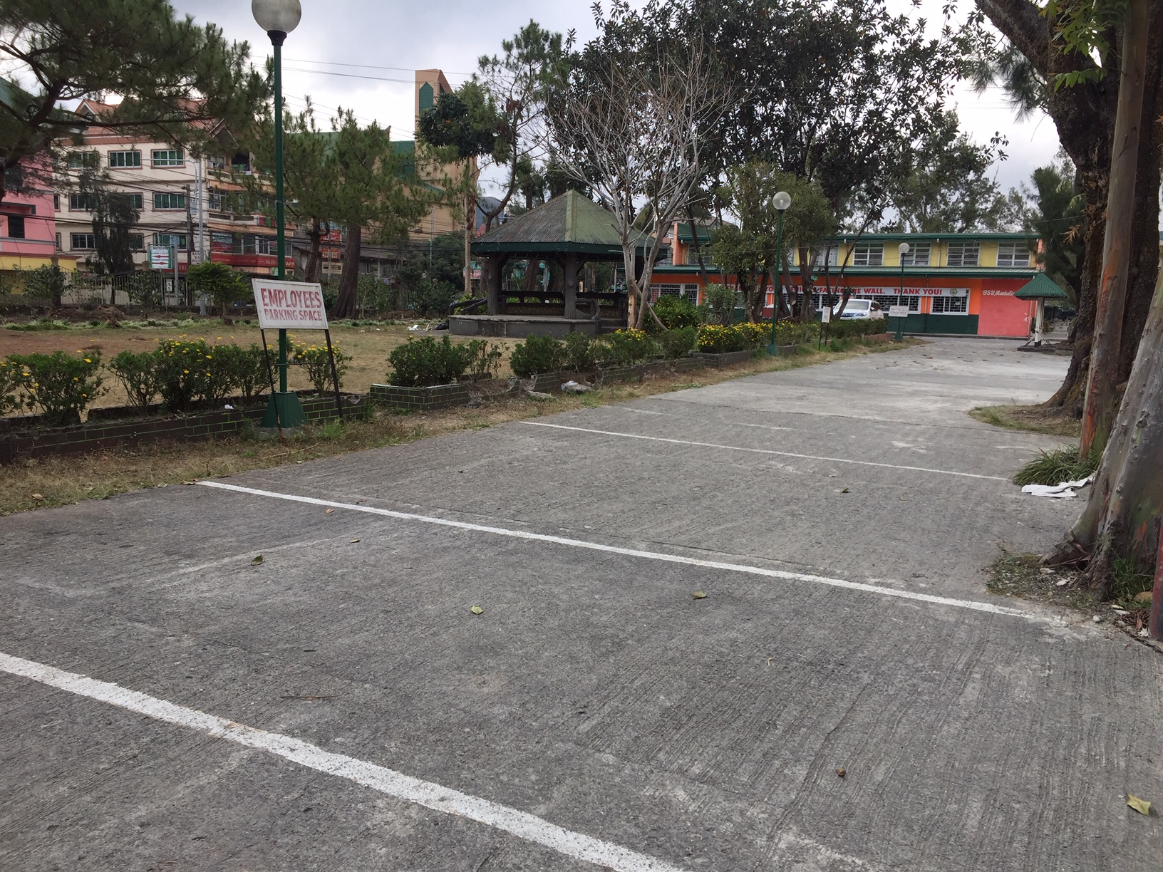 Fig. 1, Empty parking spaces during the carless day